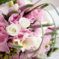david salter wholesale flowers